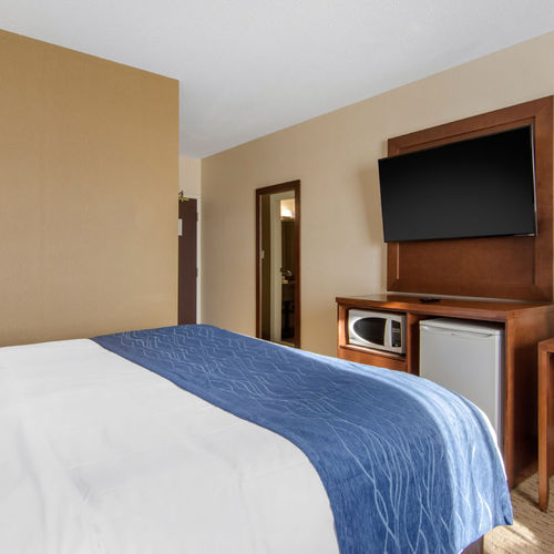 Comfort Inn & Suites Medicine Hat Pet Friendly Queen with Sofa Bed