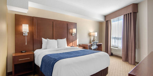 Comfort Inn & Suites Medicine Hat Business Queen